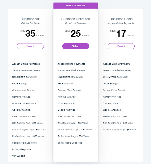 Wix's business pricing plan